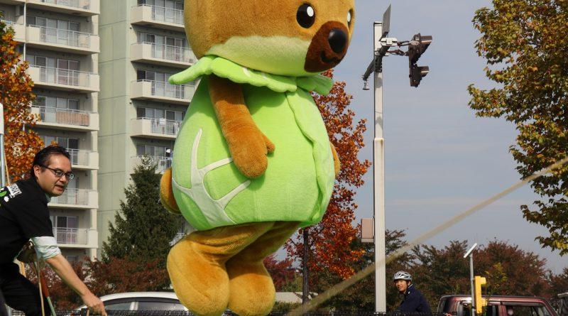 Japan's Next Top Yuru-Chara