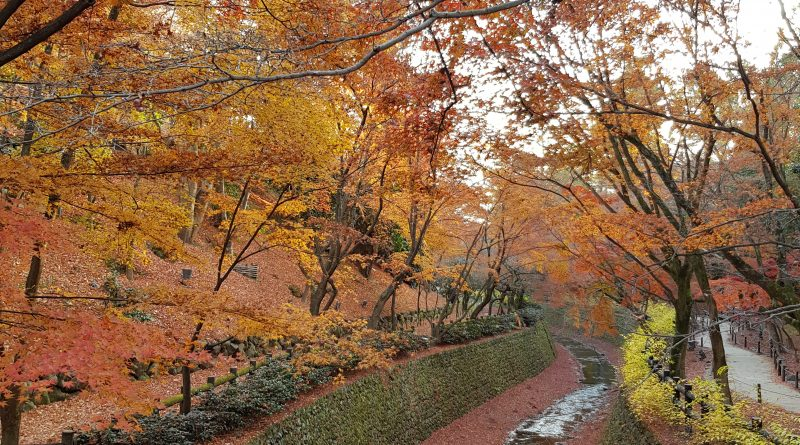 Autumn in Ancient Capital