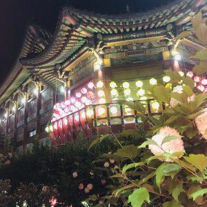 May - Lotus Lantern Festival in Busan