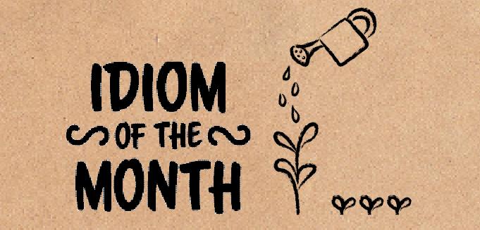 Idiom of The Month: Ikomiki